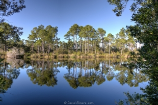 Big Lagoon State Park, reflections in the lake