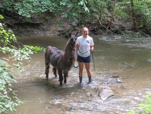 Amanda Elmore with our llama, Franklin, in Indian Creek