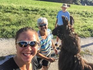 Amanda Elmore with our llama Franklin
