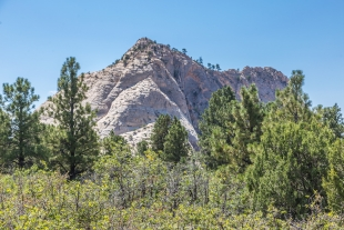 Drive along Kolob Terrace Road, Zion National Park, Utah