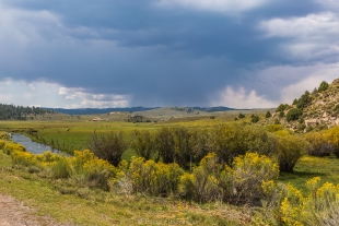 Storm over Panguitch Creek, Dixie National Forest, Utah
