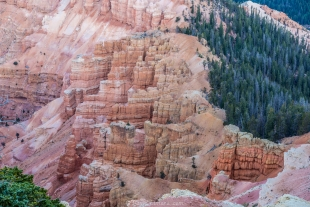 Morning light on Cedar Breaks National Monument, Utah