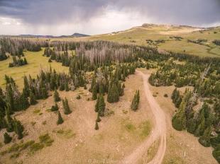 Drone forest view along Rt 143 near Brian Head, Utah