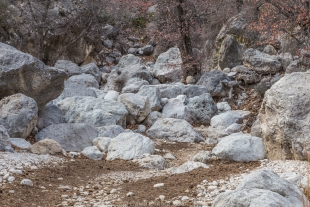 Rocks in a wash along Devil's Hall Trail, Guadalupe Mountains National Park, Texas