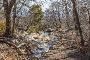 Smith spring, Guadalupe Mountains National Park, Texas