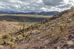 View east along hike around Crystal Hill, Kofa National Wildlife Refuge, Arizona