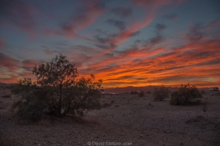 Sunset in the desert, Alamo Lake State Park, Arizona