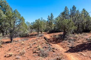 Javelina Trail, Red Rock State Park, Sedona, Arizona