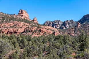 Trees and rocks along Javelina Trail, Red Rock State Park, Sedona, Arizona