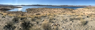 Lake panorama, Alamo Lake State Park, Arizona