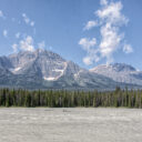 Icefields Again