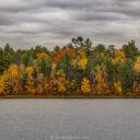 Firefly Lake CG