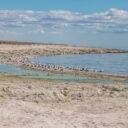 Salton Sea SRA