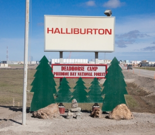 Prudhoe Bay National Forest