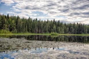 Quartz Lake SRA