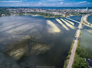 Aerial view of Monona Bay showing weeds and algae
