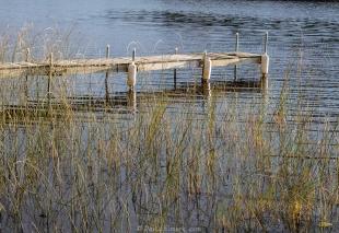 Dock at Elmore Cabin