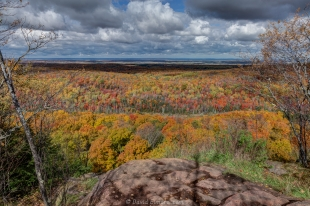 Ground view of fall colors at St Peter's Dome, Chequamegon-Nicolet National Forest, Wisconsin