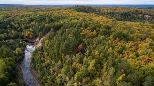 Drone view of fall colors, Copper Falls State Park, Wisconsin