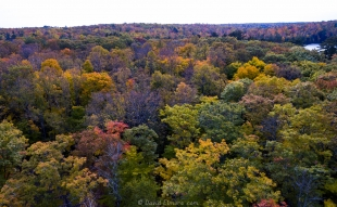 Drone view of fall colors, Two Lakes Campground, Drummond, Wisconsin