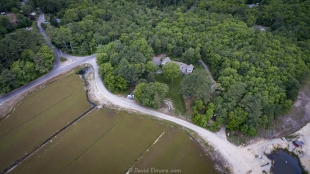 Drone view of home of Kapell Cranberries in Plymouth MA