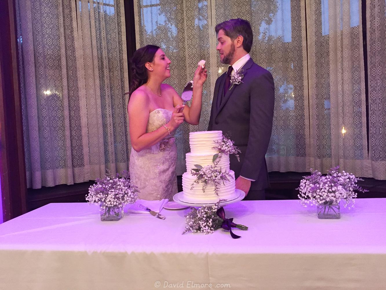Dan and Ellen\'s Wedding | David, Janet, and Vanessa