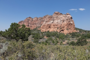 Drive along Kolob Terrace Road, Zion National Park, Utah