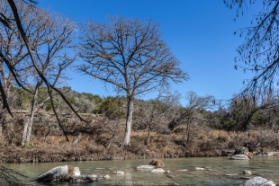 River rapids and trees at Guadalupe River State Park, Texas
