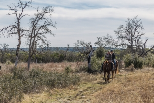 Horse riders along the Painted Bunting Trail, Guadalupe River State Park, Texas