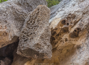 Wind-eroded rocks, Guided tour, Seminole Canyon State Park, Texas