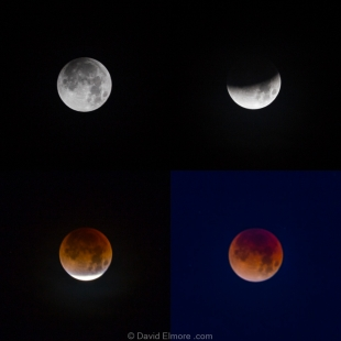 Four stages of Total Super Blue Blood-red Lunar Eclipse taken from Marfa, Texas