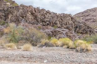 Grass and rock formation, Crystal Hill Area, Kofa National Wildlife Refuge, Arizona