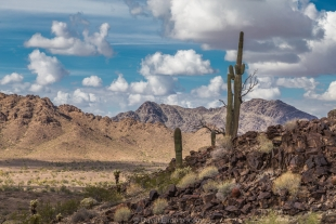 Beautiful view north of hike around Crystal Hill, Kofa National Wildlife Refuge, Arizona