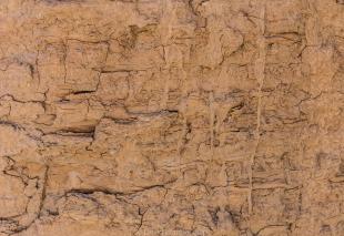Canyon wall texture, Mecca Hills Wilderness, Box Canyon Road, California