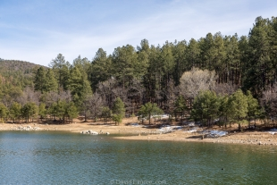 Pines and snow near Upper Goldwater Lake, Prescott, Arizona
