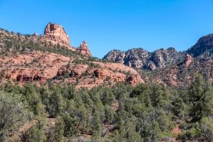 Trees and rocks along Javelina Trail, Red Rock State Park, Sedona, Arizona