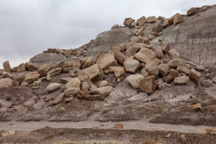 Cap rocks from an eroded mesa, Jasper Forest hike, Petrified Forest National Park, Arizona