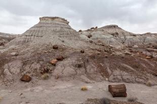 Petrified logs scattered over eroded badlands, Jasper Forest hike, Petrified Forest National Park, Arizona