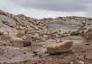 Cap rocks on a slope, Jasper Forest hike, Petrified Forest National Park, Arizona