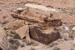 Newspaper Rock, Petrified Forest National Park, Arizona