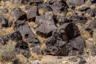 Rinconada Canyon Trail, Petroglyph National Monument, Albuquerque, New Mexico