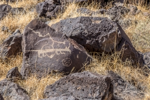 Rock carving close-up view, Rinconada Canyon Trail, Petroglyph National Monument, Albuquerque, New Mexico