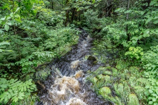 Creek entering park, Ojibwa Park, Winter, Wisconsin