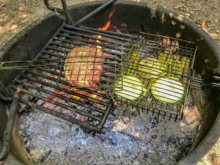 Cooking steak, onions, and asparagus on the fire at Lake Wissota State Park, Chippewa Falls, Wisconsin
