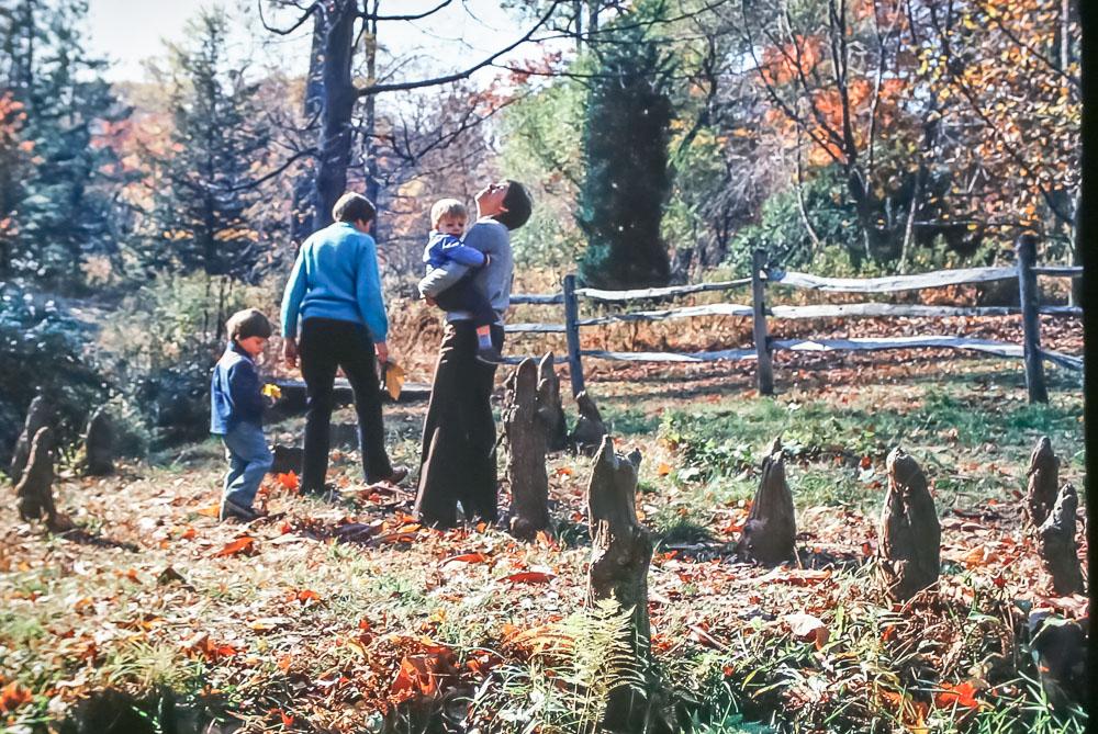 Tyler Arboretum 1978