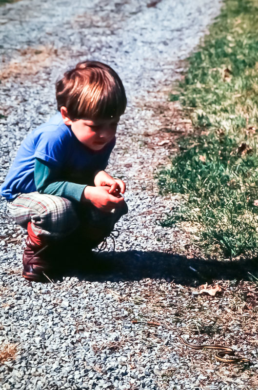 1980 Steven views snake at Meadowbrook Lane