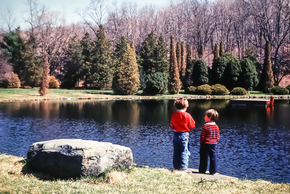 Meadowbrook Lane pond - June 1980