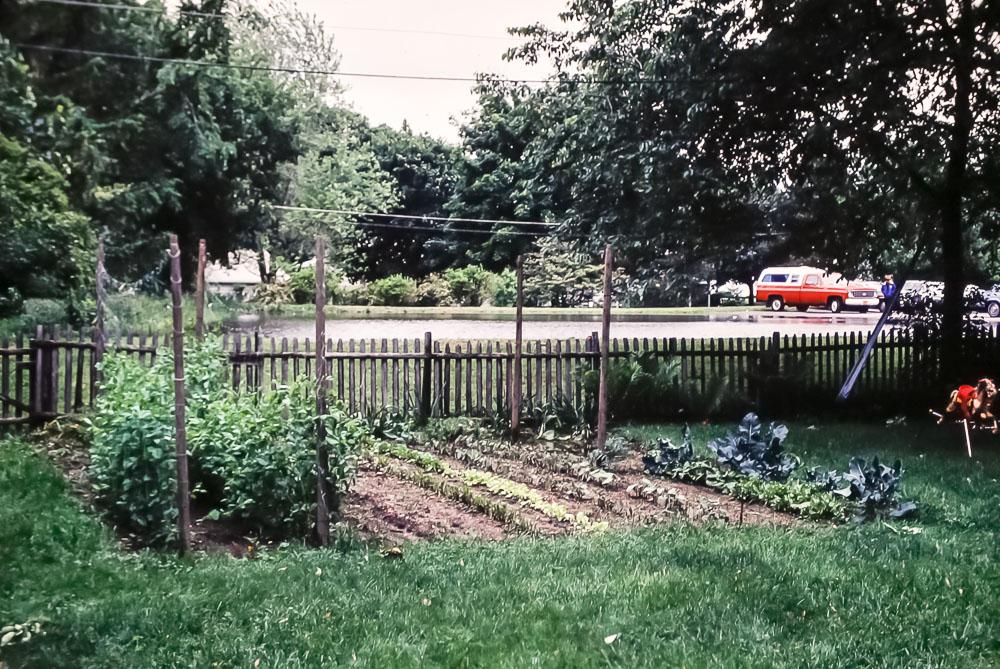 1980 12 Pickford garden
