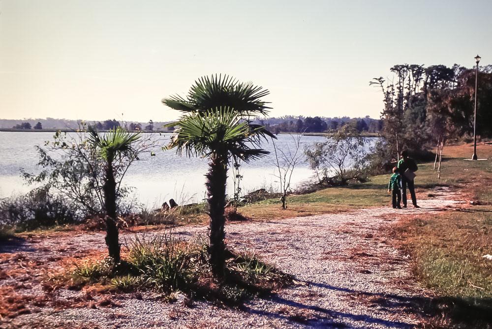 Texas and Louisiana trip -  November 1980