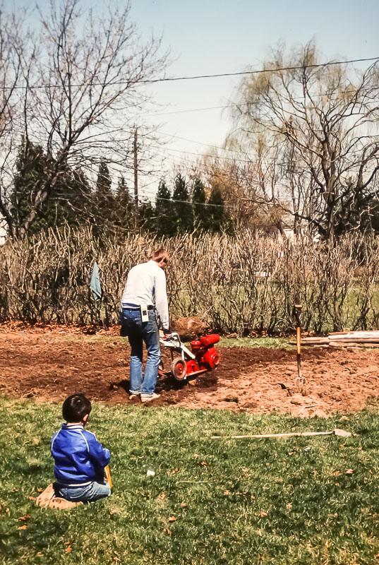 Putting in garden on Danforth Crescent - April 1983